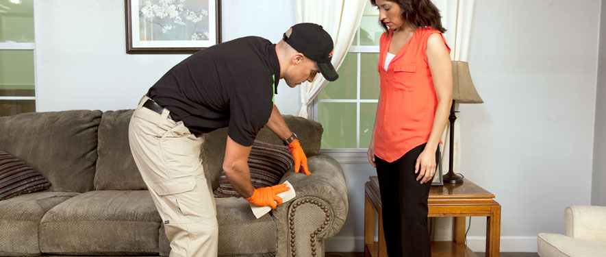 Laurel, MD carpet upholstery cleaning